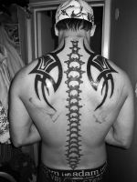 my new back by denil