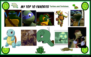 My Top 10 Favorite Turtles And Tortoises Meme by PrettyShadowj28