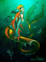 mermaid _color me_ by Daimida by juserra