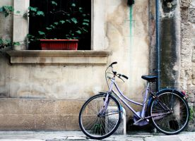 Bicycle by grey15