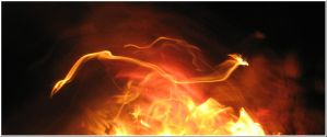 Chineese Astrology: Dragon by Fire-Love-Account