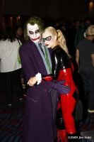 DC2009 - Joker and Harley by SchroTN