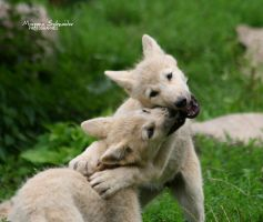 Let's play by MorganeS-Photographe