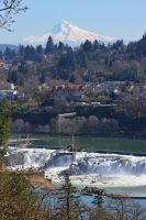 Willamette Falls and Mt. Hood, OR by finhead4ever