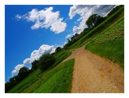 Diagonal Countryside by Ouylle