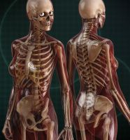 Skin and Bones by DAZ-3D