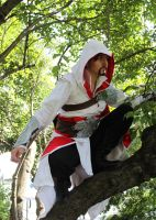 Ezio in the trees 2 by Jozo-Dono