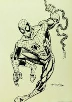 SPIDER-MAN FOR 2013 AKRON COMIC CON by FanBoy67