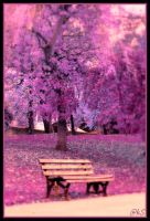 Purple Autumn by ahmedwkhan