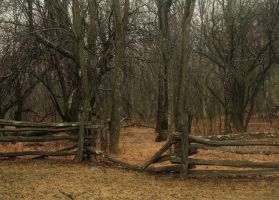 Wooden Fence by TwilitesMuse