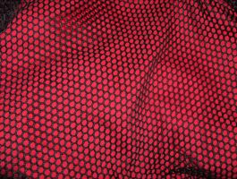 Red Behind Black Net 01..... by Shadukha-Stock