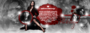 +Vampire diaries by OurLastParting