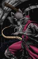 Master Splinter by 1314