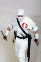 Cobra Ninja: Storm Shadow by Cobra1stLegion