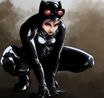 Catwoman by MeaT-Artworx