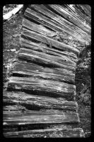 Wooden Pathways  (01) (Black and White) by SKiNBuS