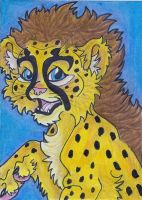 Cheetah Cub ACEO by Eviecats