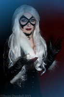Felicia Hardy - Black Cat by gadget-eneus