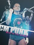 Cm Punk Poster by findmyart