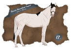 Nevada Import 17 by BRls-love-is-MY-Live