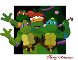 TMNT Secret Santa 2008 by burnin-meteorite