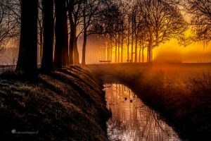 Give me a title....? by Betuwefotograaf