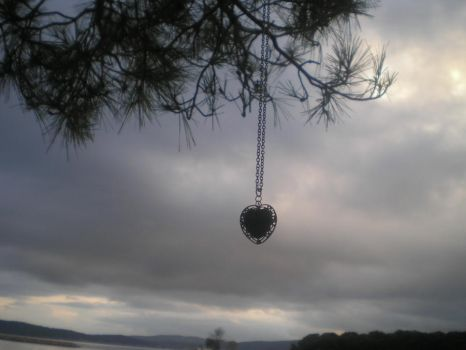 Necklace on a tree by icieprincess