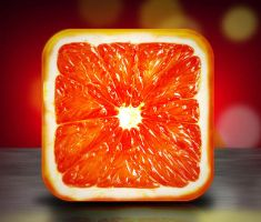 GrapeFruit Icon by MDjuann