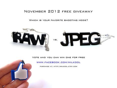 Raw vs Jpeg necklace by milkool