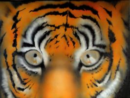 Tiger eyes airbrush by Namingway-Regret
