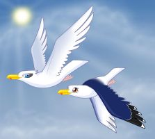 Gulls Flying Peacefully by Articuno