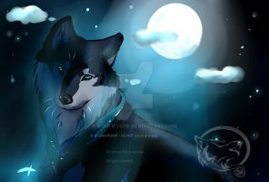 .:Late b-day gift:. Dark night with secrets by BlueWolfieART