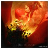 birth of love by phuture2k
