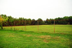 Fence and Grass by ArtmasterRich