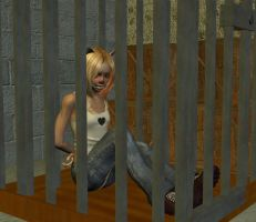 'Kitten in a Cage...' - pt 1 by wynter333A