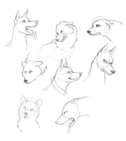 Expressions 1 by Kibah