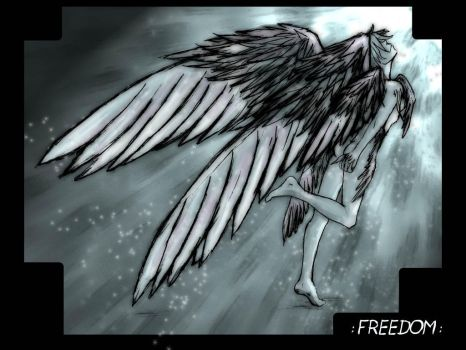 : FREEDOM : by Magnet-Rose