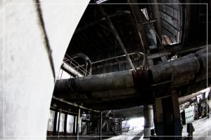 Intake by 0-Photocyte