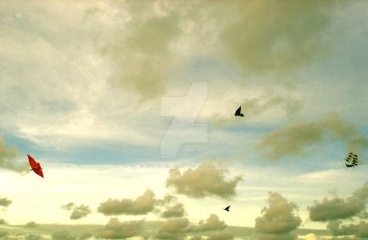 Kites Fly by enchanted-clarity