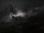 Trade:: Chained Freedom by Captured-Light
