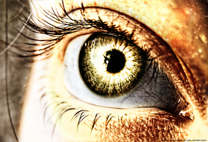 Gold Eye by SetaxDesign