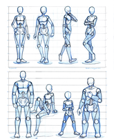 Basic Proportion Studies by TheDracoJayProduct