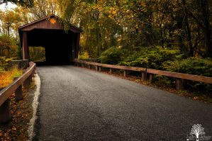 The Lonesome Road by JustinDeRosa