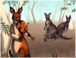 A Good Day for a Kangaroo by Sqwirry