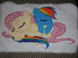 Rainbow Dash and Fluttershy by MotorCityBrony