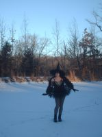 Black Swan Witch of The Winter Pond by doctorderanged