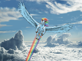 Rainbow Dash the Brazen by Pwnyville