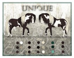 Uniques Adult Refference Sheet by Jullelin