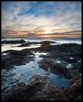 Asilomar Weekend 1 by themobius
