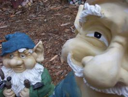 Attack of the Gnomes by kdillman